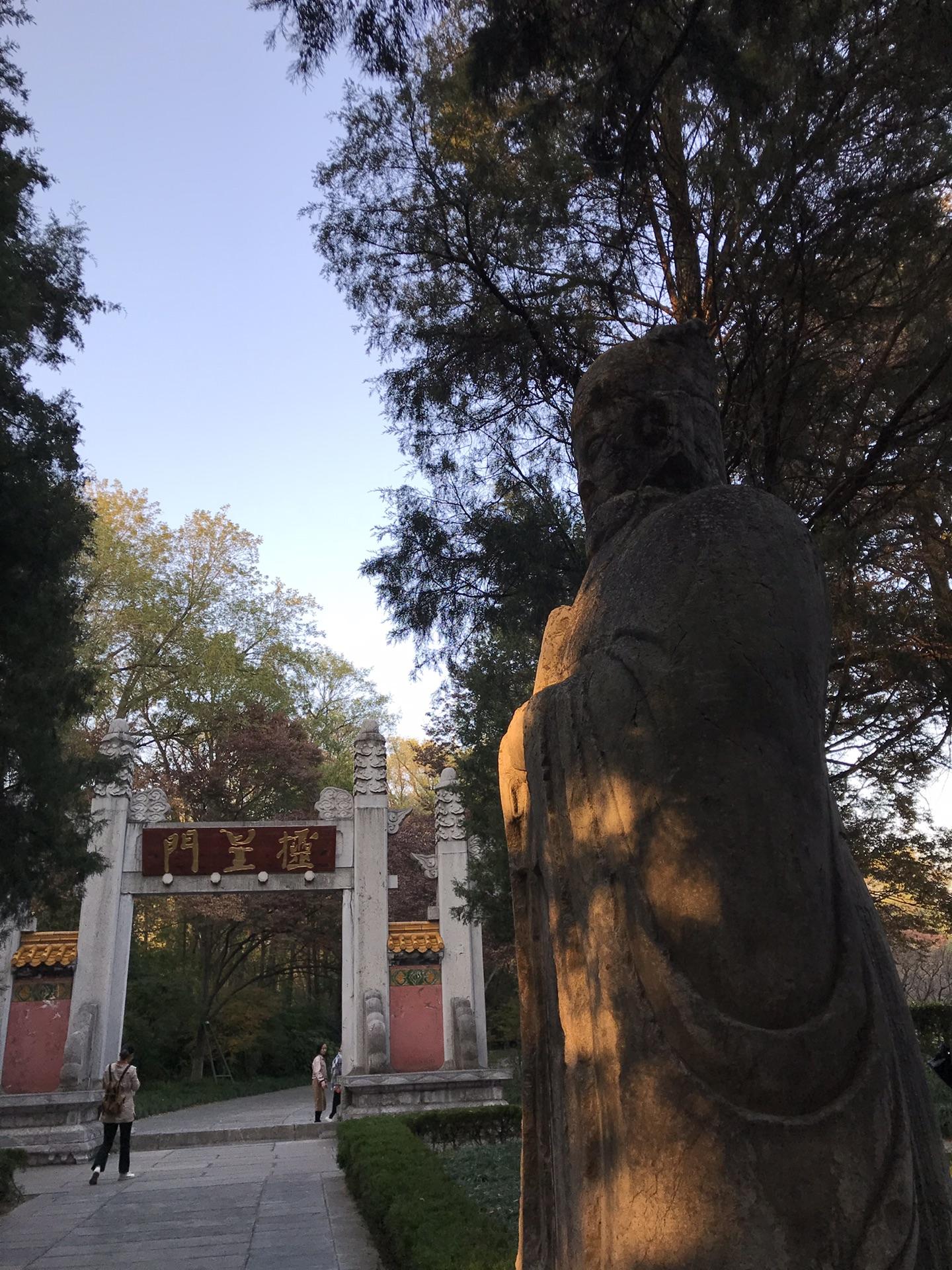 再会古城南京